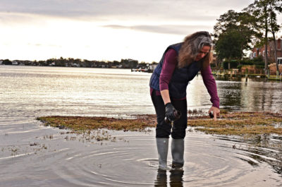 Scientist Margaret Mulholland collects a water sample from high-tide flooding in Norfolk in January.