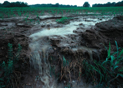 More than a billion pounds of nitrogen entered Iowa's waterways in 2016, largely from fertilizer runoff.