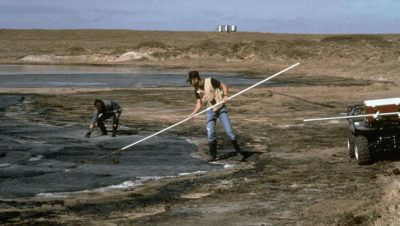 Wildlife agent Rob Lee, center, pulls birds from an oil-fouled pond in eastern New Mexico.