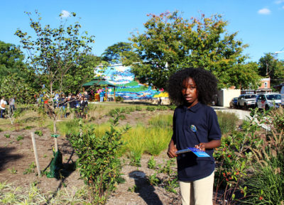 This rain garden in West Philadelphia helped transform a formerly vacant lot into a community gathering place.