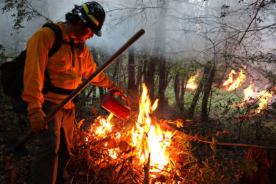 Yurok tribal member Jess McLaughlin manages a prescribed burn near Somes Bar, California last year.