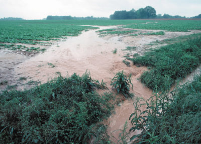 Water flows off a farm in Tennessee following a storm. Scientists project climate-fueled rain events could increase runoff nitrogen in U.S. waterways by 19 percent.