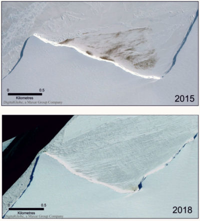 Satellite imagery showing the reduction in size of the Halley Bay colony in Antarctica in 2018 compared with 2015. The dark markings show penguin guano, and the very dense patches are the penguins themselves.