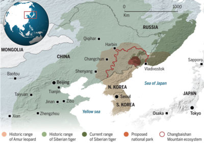 CLICK TO ENLARGE - China's new national park for Siberian tigers and Amur leopards borders Russia and North Korea.