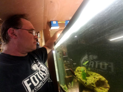 Greg Steeves, who keeps at-risk species in the basement of his Texas home, is a member of the CARES Fish Preservation Program, a hobbyist group.