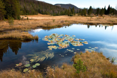 The headwaters of the Colorado River are in a marshy meadow just inside the northern boundary of Rocky Mountain National Park at La Poudre Pass, Colorado.