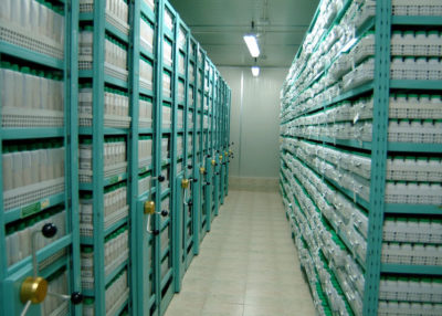 The Syrian seed genebank in Tal Hadya.