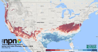 A map of plant growth, including the emergence of leaves and blooms, updated daily tracks the arrival of spring compared to normal seasonal timing over a 50-year period.