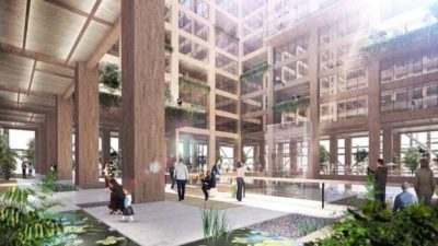 The interior of the new W350 building will be made entirely out of wood.