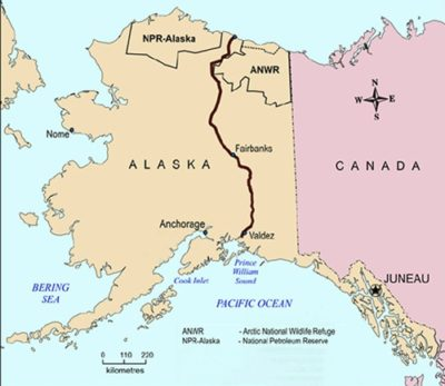 The Trans-Alaska Pipeline runs 800 miles from Prudhoe Bay in the north to the port of Valdez in the south.