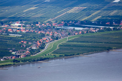 A dike protects a village downstream from Hamburg. Some propose that agricultural areas, such as the orchards, right, should be opened for flooding during high water.