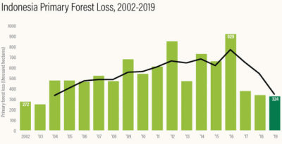 Primary forest loss in Indonesia has decreased in each of the last three years.