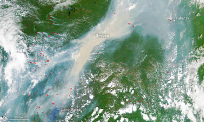 A satellite image shows dozens of wildfires burning across Siberia on June 23, 2017.