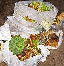 Food waste for biogas plant