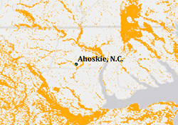 forests surrounding Enviva Ahoskie plant