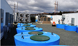 Flywheel energy storage facility