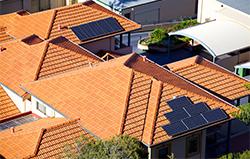Despite Hurdles, Solar Power in Australia Is Too Robust to Kill