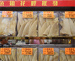 processed shark fins