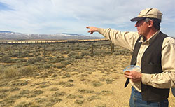 sage grouse habitat