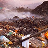Out of India's Trash Heaps