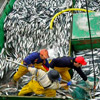 Will Reform Finally End the Plunder of Europe's Fisheries?