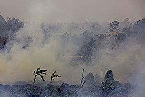 indonesia_forest_fires_2015.jpg