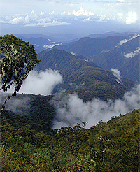 Manu National Park in Peru