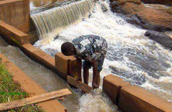 Micro-hydro project in Kenya