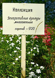 N.I. Vavilov Research Institute of Plant Industry