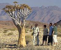 Namibia walking tour safari