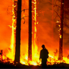 Climate Wildfires